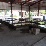 Building of the Store-room Slab – Mwandi OVC Project